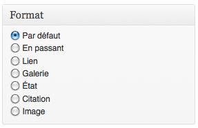 """La metabox """"format"""" pour choisir le format d'un post dans WordPress"""